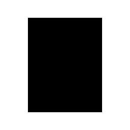 Permanent Insurance Icon
